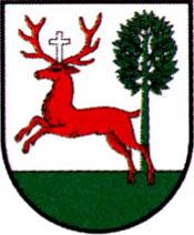 miasto Wyrzysk