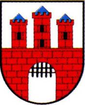miasto Żarki