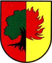miasto Żarów