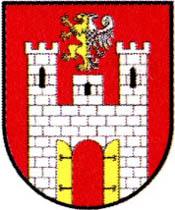 miasto Zawichost